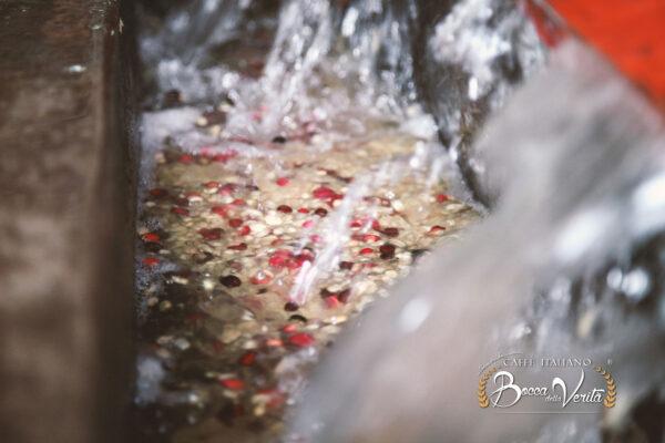 Descafeinado de granos con agua de manantial